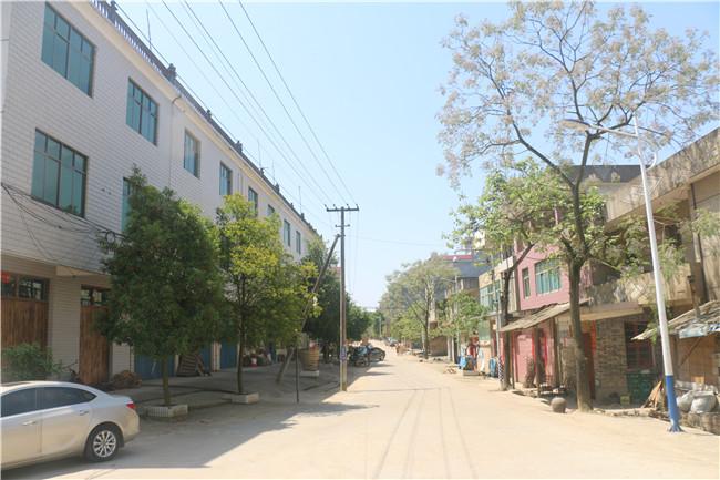 庙前村委会农家乐休闲基地